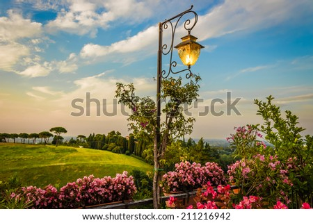 Lamp, Flowers, green weeds, leaves, plants and trees on colorful sunset on vineyards backgrounds on cultivated hills in Italian countryside the small village of Dozza near Bologna in Emilia Romagna - stock photo