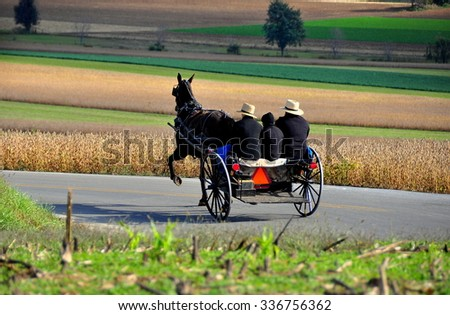 Lancaster County, Pennsylvania - October 17, 2015:  Amish family riding in the horse and buggy passing fields of dried cornstalks and soybeans  *