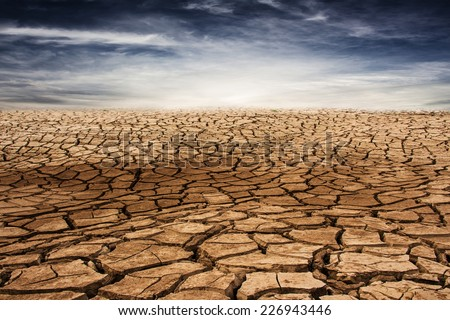 Land with dry and cracked ground. Desert - stock photo