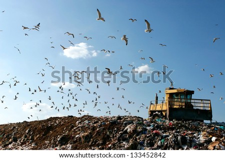 Landfill with bulldozer working, against beautiful blue sky full of sea birds. Great for environment and ecological themes