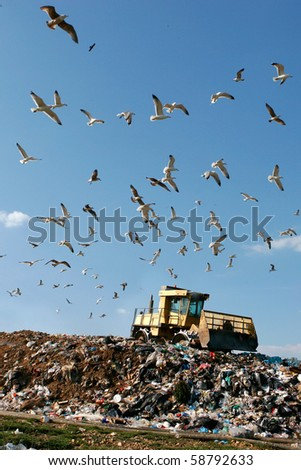 Landfill with bulldozer working, against beautiful blue sky full of sea birds. Great for environment and ecological themes - stock photo