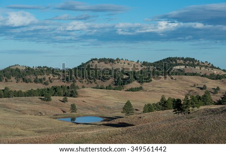 Landscape along Wildlife Loop Drive in Custer State Park near Custer, South Dakota  - stock photo