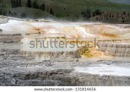 Yellowstone Mammoth Hot Springs Wyoming Usa Stock Photo ...