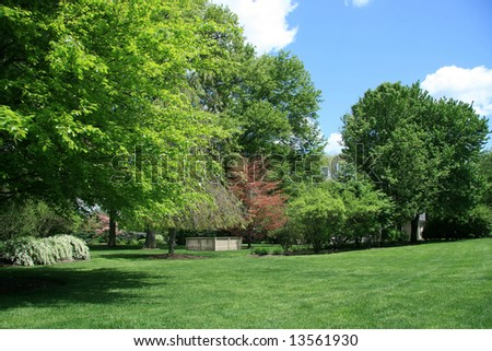 Landscape at Spring - stock photo