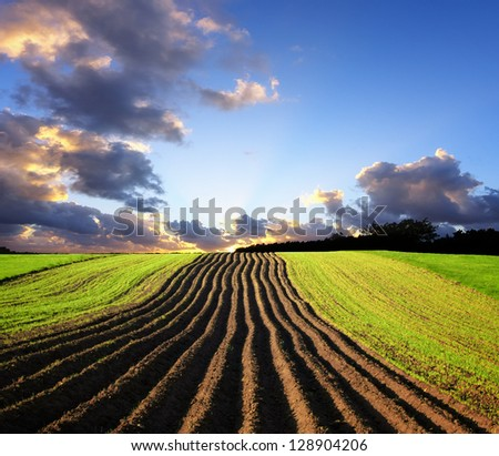 Landscape at sunset - stock photo