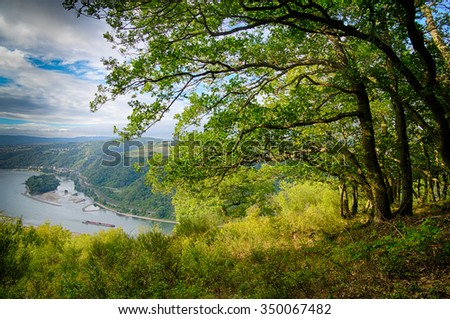 Landscape at the middle rhine