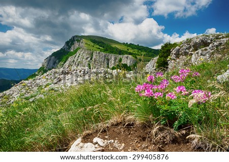 landscape, beautiful view of the lush hills and mountains with flowers in the foreground - stock photo