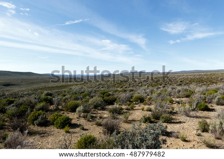Landscape Blue Skies and green fields of The Karoo