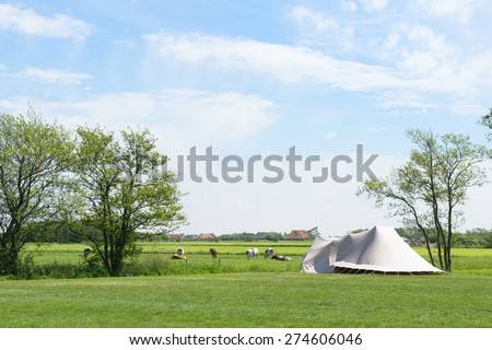 Landscape Camping with tent in meadows with cows - stock photo