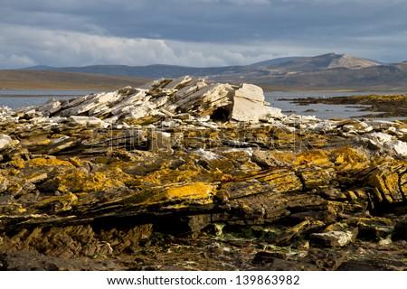 Landscape Falkland Islands - stock photo