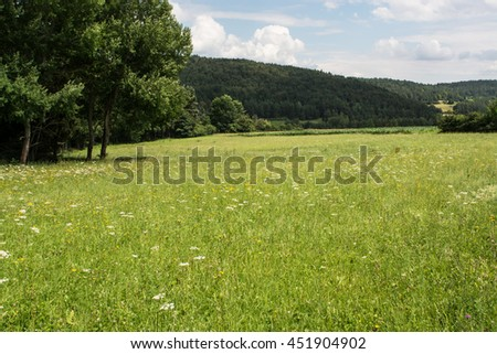 Landscape.Field.Forest.Trees.