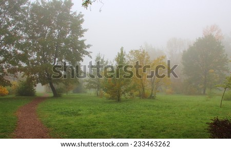 Landscape, fog in city park