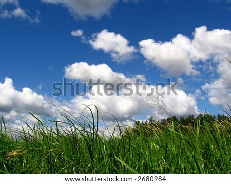 landscape - forest and cloudly sky, beauty place, rest time - stock photo