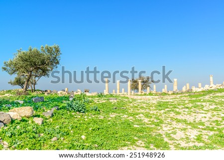 Landscape grass prospects Roman ruins at Umm Qais in present-day northern Jordan. - stock photo