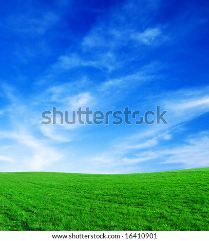 Landscape - green filed, the blue sky and white clouds. - stock photo