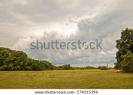 Landscape in a cloudy day from Letea village, in the Danube Delta area, Romania - stock photo
