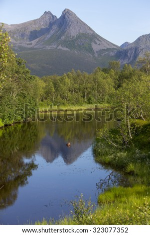 landscape in andoy, norway