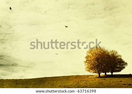Landscape in autumn with crows - stock photo