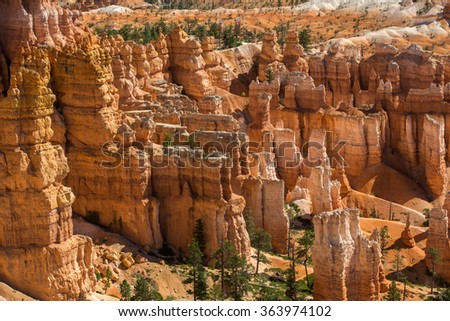 Landscape in Bryce Canyon National Park.
