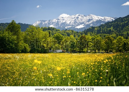 Landscape in the Bavarian Alps.  Shallow deep focus - stock photo