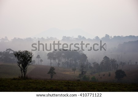 Landscape in the mist of a national park in Thailand.