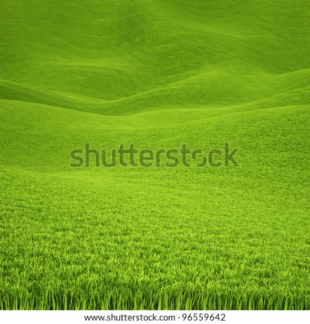landscape is covered with green grass. - stock photo