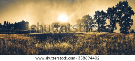 Landscape misty panorama. Fantastic dreamy sunrise  through trees - stock photo