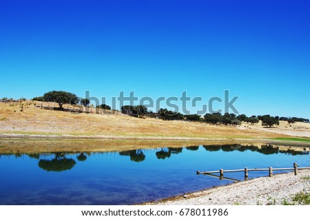Landscape of Alqueva lake, Alentejo,Portugal