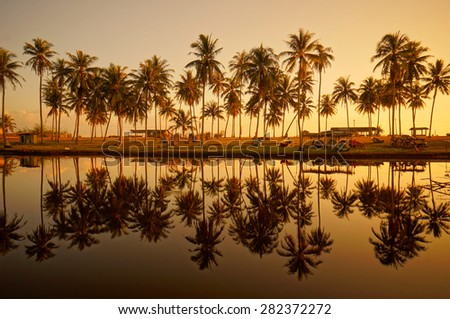 Landscape of beautiful sunrise with coconut palm trees and blue sky
