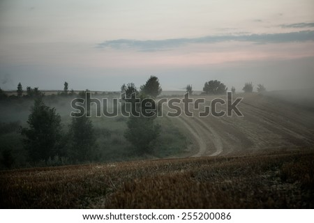 landscape of dense fog in the field at sunrise in late summer  - stock photo