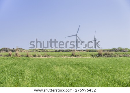 Landscape of green barley field and wind generator with blue clear sky in Gapado Island of Jeju Island in Korea.