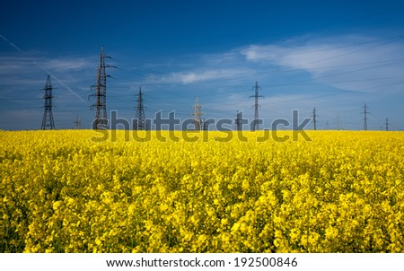 Landscape of high voltage posts in rapeseed field - stock photo