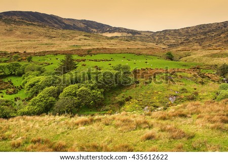 Landscape of Ireland ( Kerry country) - stock photo