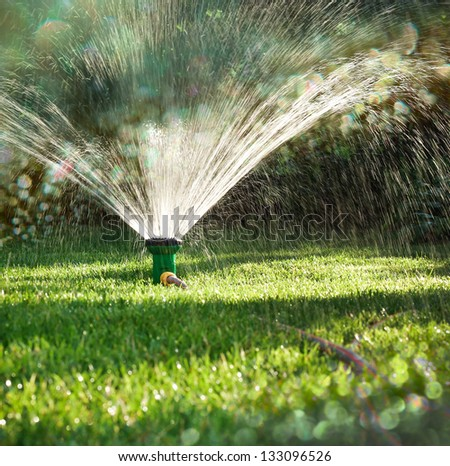 Landscape of irrigation garden. Lawn sprinkler spraying water over green grass.  Irrigation system - technique of watering in the garden. - stock photo