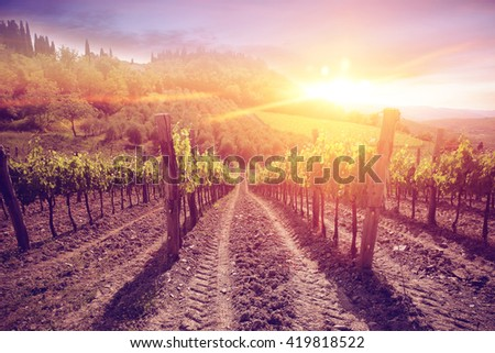 landscape of red sunset time and tuscany  - stock photo