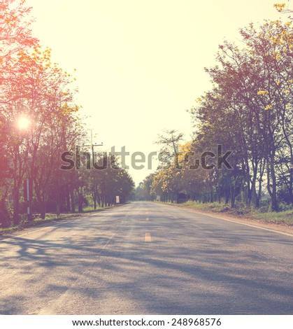 Landscape of road way in summer with tree forest ,Vintage color toned,nature background, instagram filter - stock photo