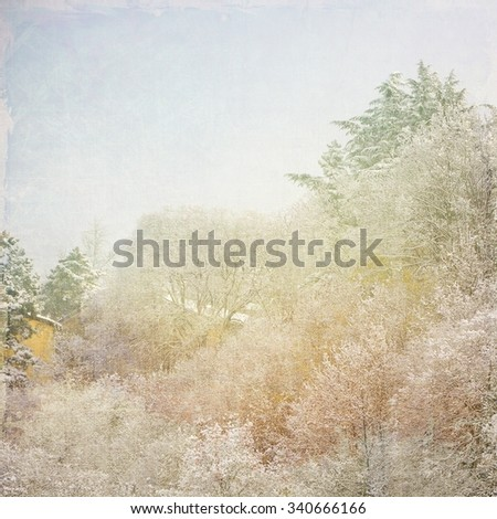 Landscape of snow-covered trees - stock photo