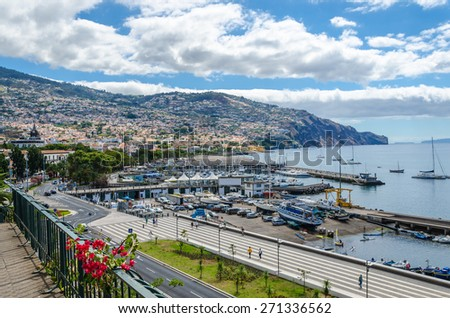 Landscape of the city and the port of Funchal from the hill. Flowers in the foreground, Madeira, Portugal. - stock photo