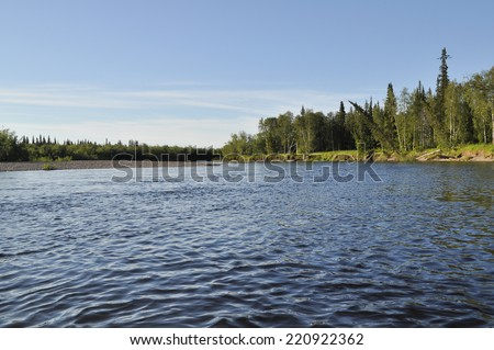 Landscape of the taiga river. River Polar Urals sunny summer afternoon.