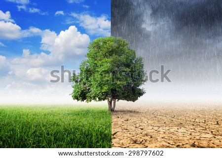 Landscape of Trees With the changing environment, Concept of climate change. - stock photo