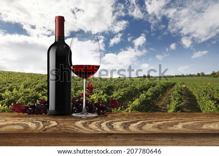 landscape of vineyards with bottle, glass of wine and bunch of grapes - stock photo