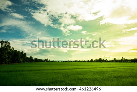 landscape on sunset - green field under sky and clouds