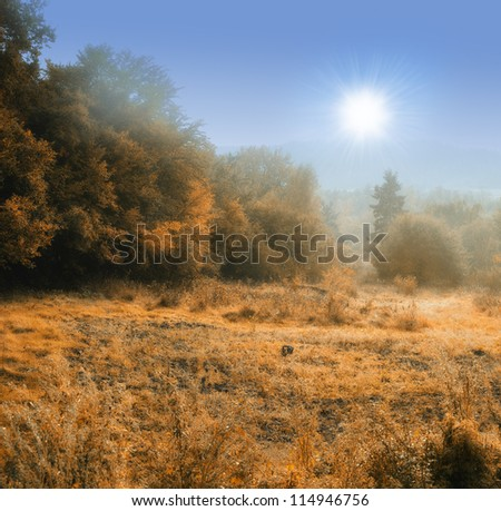 Landscape photo of mist an early morning - stock photo