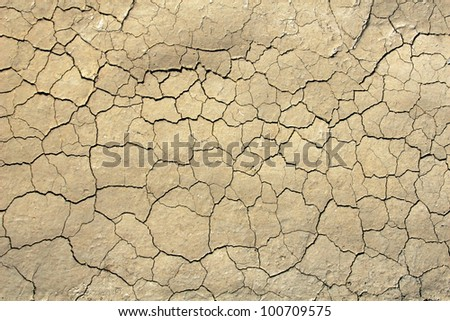 Landscape style photo of dry cracked soil taken along side road of tulip fields in Skagit Valley Washington./ Dry Cracked Soil in the Spring / Nice texture,background, or an example of erosion.