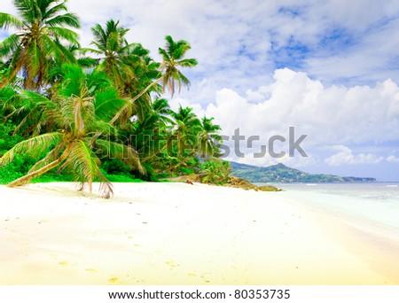 Landscape Tranquility Jungle - stock photo