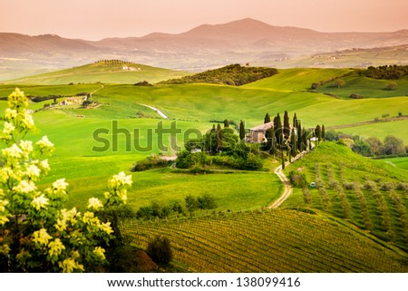 Landscape, Tuscany - Italy - stock photo
