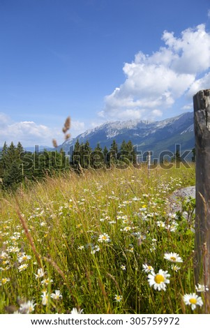 Landscape view from Tirol, Mountain Wilder Kaiser. Look from Ellmau. - stock photo