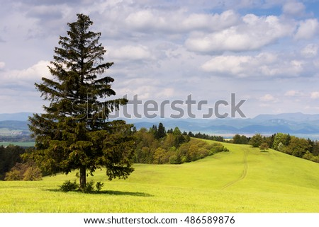 Landscape view of green meadow with tree and hills of Velka Fatra mountains in spring,  Slovakia, central Europe