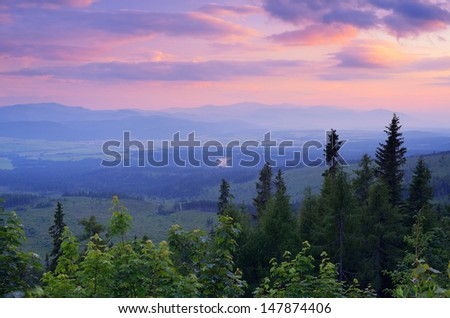Landscape with a colorful sunset and pine forest