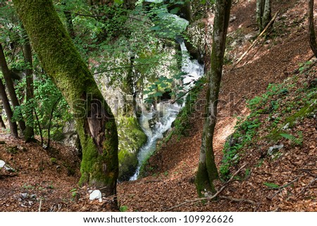 Landscape with a river in mountains and forest - stock photo